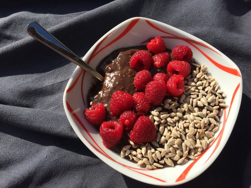 Healthy cocoa pudding (vegan)